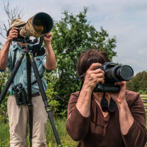 Birding & nature photography experience on the Kawartha Lakes Arts & Heritage Trail