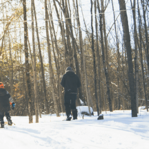 Family snowshoeing in the woods