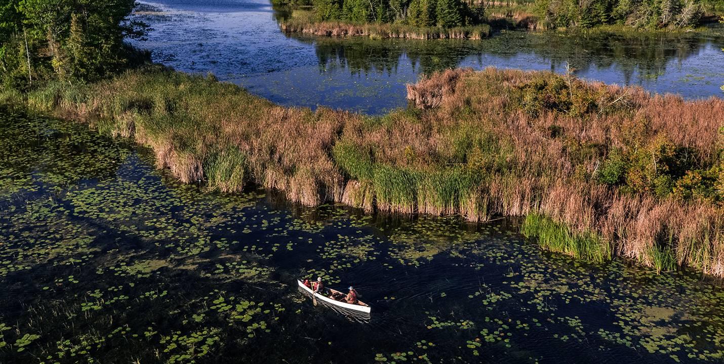 00 TSW Hidden Gems Wetlands 3