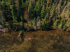 Aerial view of Balsam Lake Provincial Park shoreline with canoeist