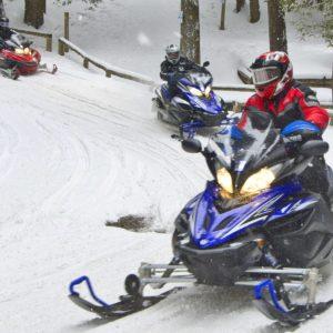 Snowmobiles on a trail