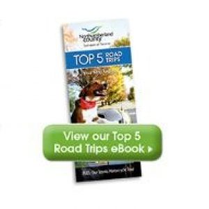Northumberland Top 5 Road Trips Map