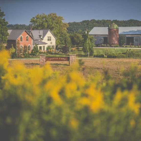 South Pond Farms - Photo by Ridout Photography