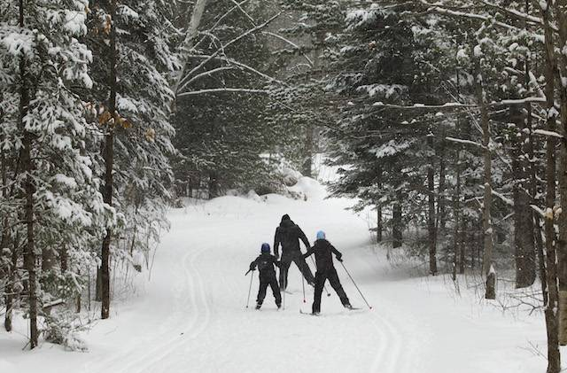 Cross country skiers navigate snow covered trails at Kawartha Nordic ski facility off Hwy 28 near Burleigh Falls