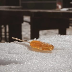 Experience Maple Syrup in Kawarthas Northumberland